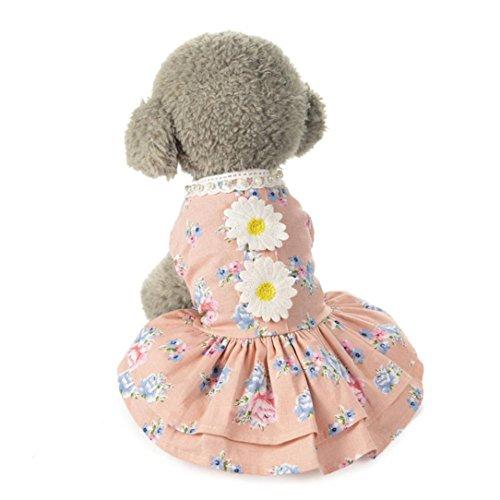Hmeng Haustier-Kleidung❤️heißer Hund Katze Bogen Tutu Kleid Spitze Rock Pet Puppy Dog Princess Kostüm Bekleidung Kleidung (Rosa, S)