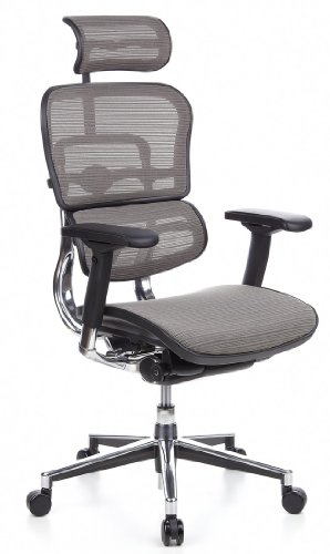hjh OFFICE 652100 Bürostuhl Chefsessel ERGOHUMAN Netzstoff, grau, viele individuelle Einstellmöglichkeiten, robuster Netzstoff, Bürodrehstuhl ergonomisch, verstellbare Armlehnen, Schreibtischstuhl