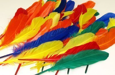 Ente Quill Federn für Indian Head Kleider (Kleider Head Indian)