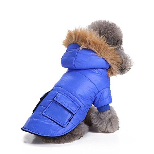 ranphy Kleiner Hund Katze Down Coat kaltem Wetter Jacke Chihuahua Hoodie Warm Hund Bekleidung Haustier,