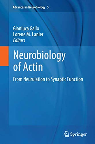 Neurobiology of Actin: From Neurulation to Synaptic Function (Advances in Neurobiology, Band 5)