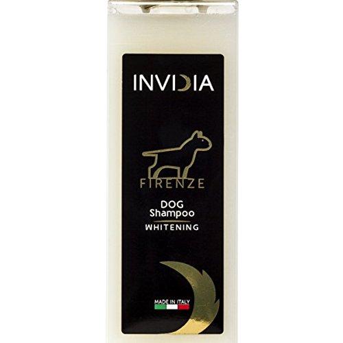 INVIDIA Shampoo Aufhellung Ravvivante Agli Estratti von Zitrone und Tee grün Florenz. - Aufhellung Feuchtigkeit Behandlung
