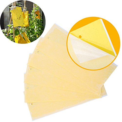 tianor-5pcs-yellow-dual-sided-sticky-fly-traps-for-plant-insect-like-aphids-fly-wasp-bug-mosquito-sw