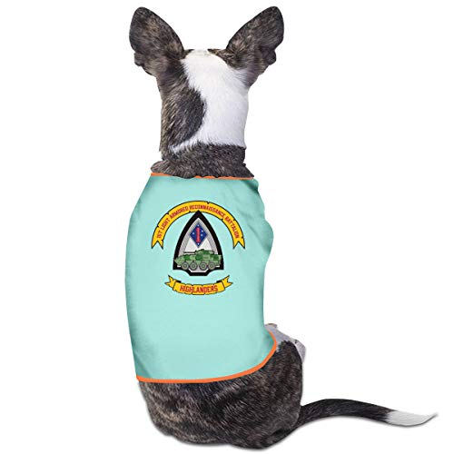 Marine Dress Blues Kostüm - Jiaojiaozhe 1st LAR Marine Corps Pet Service Pet Clothing Funny Dog Cat Costume Tshirt Sky Blue