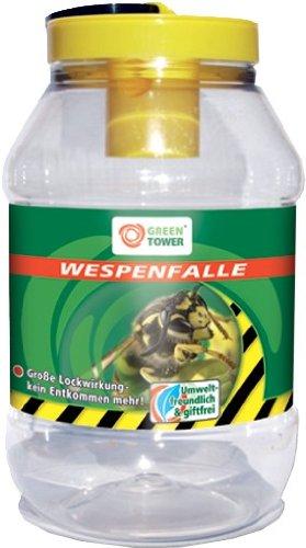 vespe-caso-grande-effetto-lock-effetto-ca-3-settimane-sostanze-contenuto-cibo-media-aromi