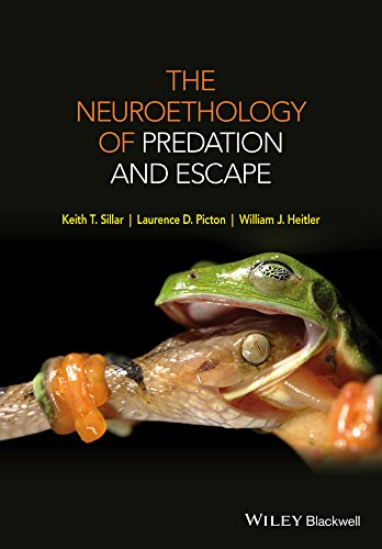 The Neuroethology of Predation and Escape (English Edition)