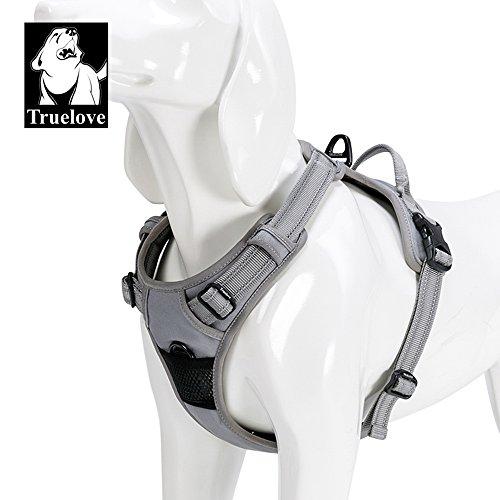 Truelove Hundegeschirr TLH5651,verhindert Zerren, reflektierende Nähte sorgen für Sichtbarkeit in der Nacht, für Abenteuer im Freien, groß -