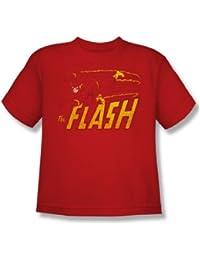 Das Flash-Geschwindigkeit Distressed Jugend Kurzarm T-Shirt in Rot von DC Comics