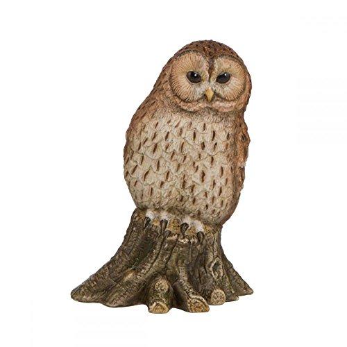 Goebel Vogel des Jahres Vogel des Jahres 2017: Waldkauz Bunt -