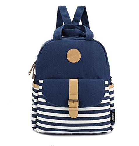 Di Grazia 2 Way Convertible (2 in 1) Womens Backpack Handbag (Blue, Blue-Stripe-2way-Canvas-Backpack)