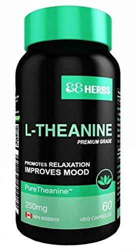 L- Theanin – Pharmazeutische Qualität - Vegetarische Kapseln - 250 mg (pro Kapsel ) - 60 Kapseln
