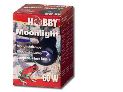 Hobby Moonlight Mondlichtlampe 60 Watt