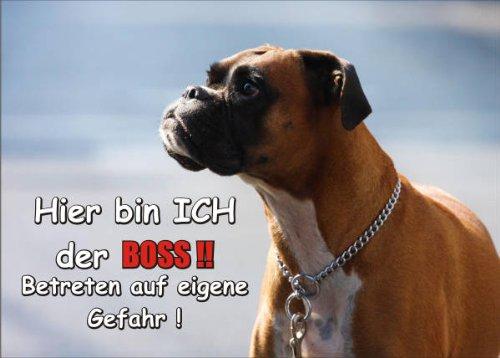 INDIGOS UG - Türschild FunSchild - SE351 DIN A5 ACHTUNG Hund Boxer - für Käfig, Zwinger, Haustier, Tür, Tier, Aquarium - aus hochwertigem Alu-Dibond beschriftet sehr stabil