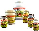 WellVita 21 Tage Stoffwechselkur Komplettpaket mit Begleitbuch, Ernährungsplan und Einkaufsliste