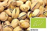 41Cyu5OuJ4L. SL160  - Wie gesund sind Nüsse?