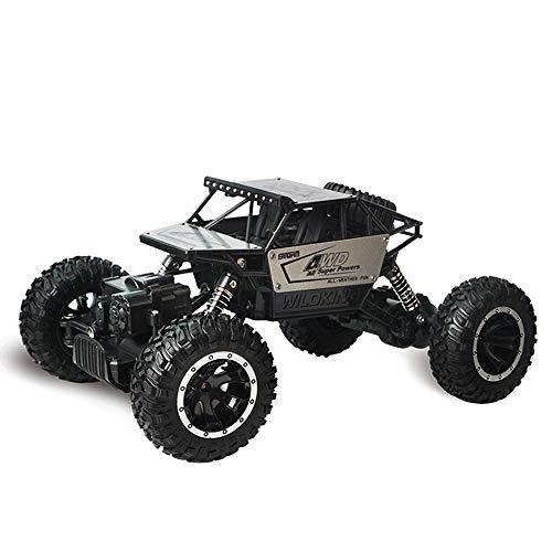 WANGOFUN Ferngesteuerte Autos, elektrische schnelle Racing Buggy 4WD High Speed 1:18 RC Hobby-Auto, 2,4 GHz RC Rock Off-Road-Fahrzeug wirklich cool für Kinder Erwachsene Geschenk,Silver