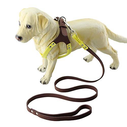 Lanbinxiang@ Reizende hübsche schöne Art und Weise Bequeme Mikrofaser-Brille-Art Breathable Hundegurt-Bügel, Größe: S Gerät (Farbe : Gelb)