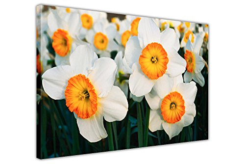 Weiß und Orange Blumen auf Leinwand Kunstdruck Wand mit Bilderrahmen Foto Floral Art Poster zeitgenössisch 02- A3 - 16