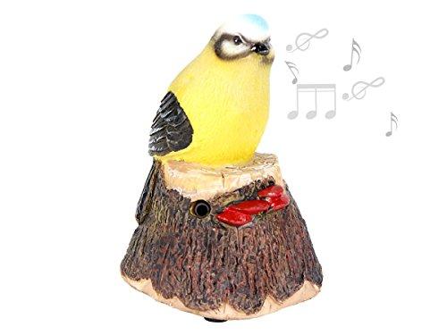 Alsino Bewegungsmelder pfeifender Vogel Durchgangsmelder zwitschernder Vogel Garten Deko, Variante wählen:78/6258 Vogel 1