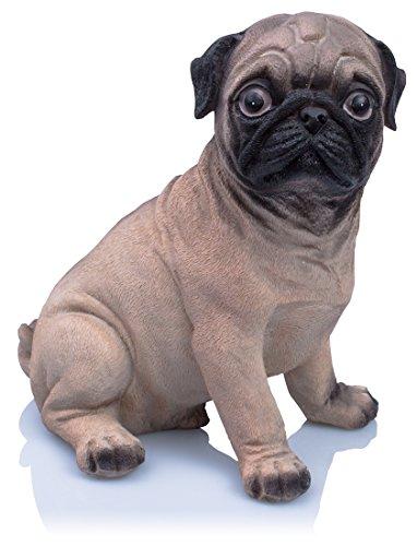 "Animal Money Box - Diseño ""Sweet Pug"" marrón 19 x 18 x 12 cm - Caja de regalo temática Dog Dog - Grinscard"