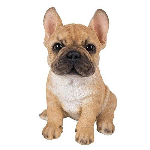 Vivid Arts Pet Pals Golden French Bulldog Puppy