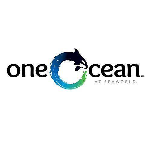 one-ocean-shamu-show