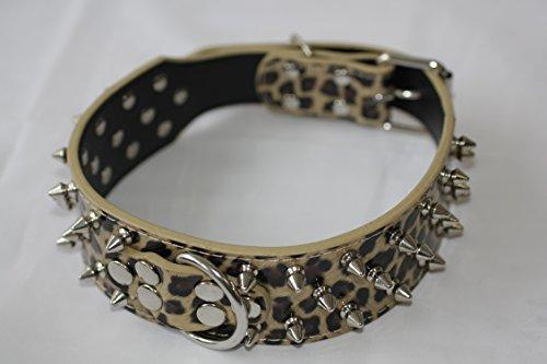 HUNDEHALSBAND Hunde NIETENHALSBAND Spikeshalsband Leder Halsband mit Nieten CL06 (LEOPARD, XL) Lange Spike Hundehalsband