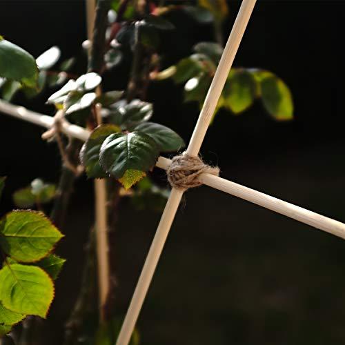 ORANGE DEAL 100 x Pflanzenstüze Tomatenstangen Rankgitter aus Holz Pflanzstab Rankstab 90 cm aus Bambus Ø 6 mm inkl. 40 Pflanzenbinder und 30m Bindfaden - 9