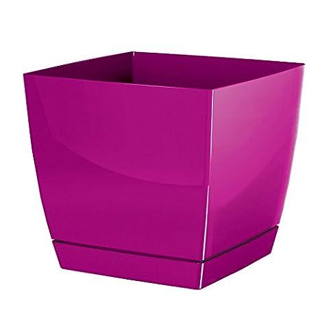 Prosper Plast dukp135–235C 13,5x 13,5x 12,4cm
