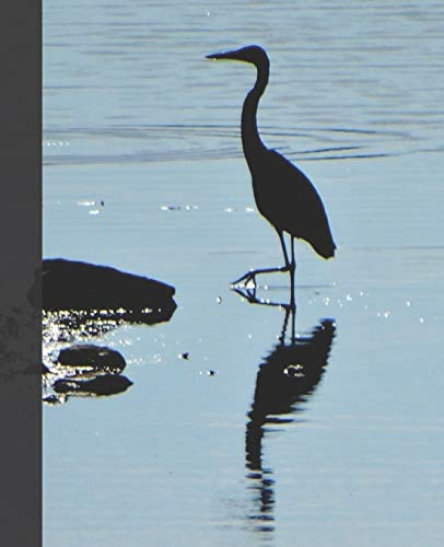 Pretty Heron in Lake  Rocky Mountain  Wildlife Photograph Wide-ruled School Composition Lined Notebook (Western wildlife Birds Covers:  Fun School Supplies & Stuff, Band 1)