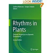 Rhythms in Plants: Dynamic Responses in a Dynamic Environment