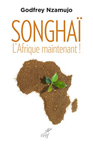 Songhaï. L'Afrique maintenant ! par Godfrey Nzamujo