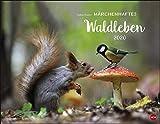 Trunov Waldtiere Poster Kalender 2020