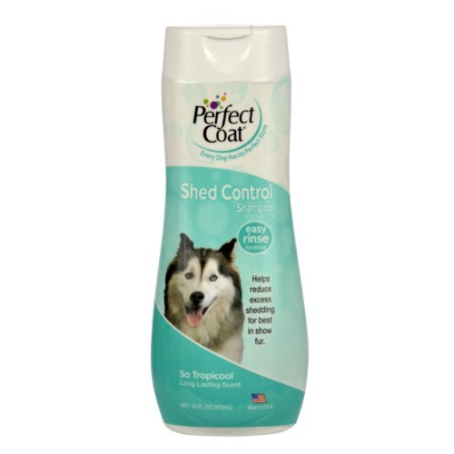 Perfect Coat Shed Control Shampoo 16oz by 8 IN 1 PET PRODUCTS (8in Shampoo 1)
