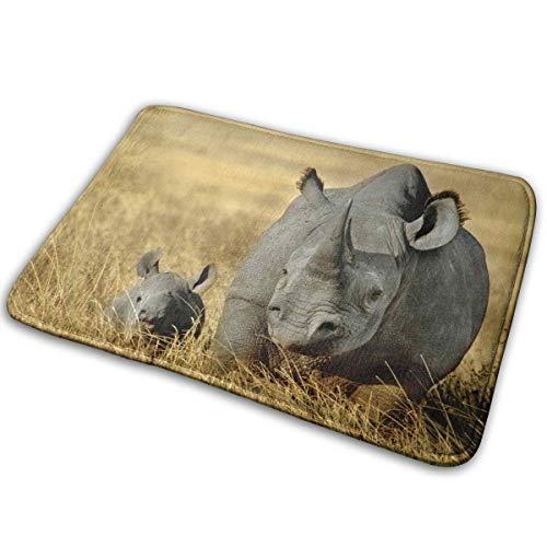 Landianguangga Rhinoceros Home Door Mat Super Absorbent