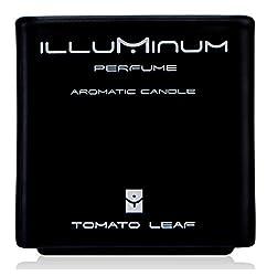 Illuminum Haute Perfume Aromatic Candle