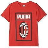 Puma AC Milan Shoe Tag J