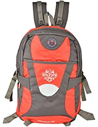Friend Agencies Nylon 20 Liters Red & Grey School Backpack (FA017)