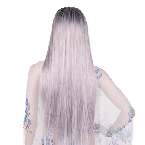 Ombre graue Perücke Synthetische Kanekalon Haar 60 Cm 280 G lange Gerade vollen Kopf Schwarz Grau Perücken für Frauen Hair Extensions ombre Grau 24 Zoll (Perücke Echthaar Graue)