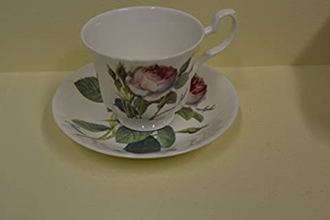 Roy Kirkham Redoute Rose Teacup & Saucer in Fine Bone China