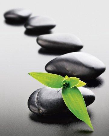 poster-de-piedras-zen-tamano-green-b-x-h-40-x-50-cm-poster-de-coches-mini-verde-en-forma-de-flor-sob