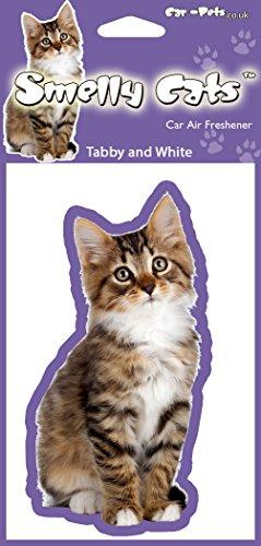 Katze Liebhaber Geschenk - gestromt und weiße Katze (Tabby and White) Air Freshener X 4 Stk. Auto-Lufterfrischer einzeln verpackt. Ideales Geschenk für Freunde und Familie.
