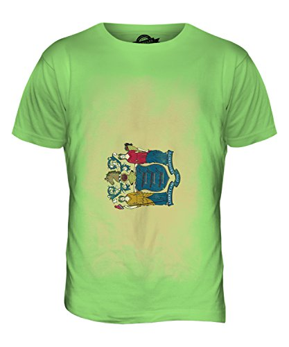 CandyMix Bundesstaat New Jersey Verblichen Flagge Herren T Shirt Limettengrün