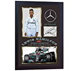 SGH SERVICES Gerahmter Foto-Druck Lewis Hamilton Formel 1 Weltmeister 2018, gerahmt