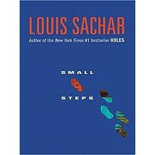 Small Steps (Thorndike Press Large Print Literacy Bridge Series)