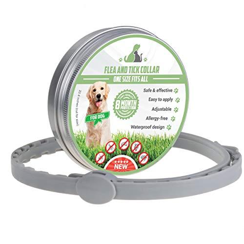MENGZF Collar Antiparasitario para Perros y Gatos