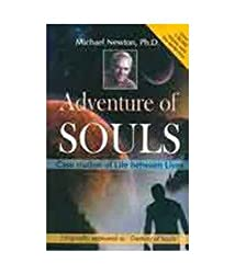 Adventures of Soul Case Studies of Lives Between Lives