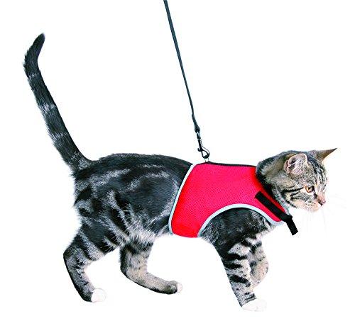 XCat Katzen-Garnitur mit 1,20m Leine (Brust Cat)