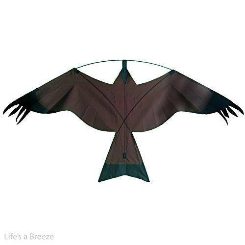 braun-hawk-vogelscheuche-kite-flach-hawk-kite-kann-geflogen-werden-von-einem-fahnenmast-teleskop-kos