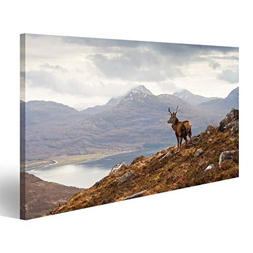 islandburner Bild auf Acrylglas Wilder Hirsch, der Loch Torridon und den drastischen Wester Ross-Gebirgszug, Schottland übersieht Wandbild Acrylglasbild Glasbild TYS